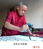 王新云书法展