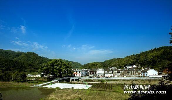 祁门小路口镇双莲村:千年古樟见发展,美丽乡村为民生