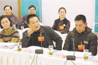 """深入推进""""旅游+"""" 促产业融合发展 ——市政协委员讨论《政府工作报告》侧记"""