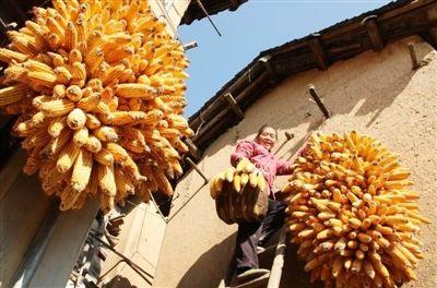 安徽黃山:扶貧路上一個也不能少