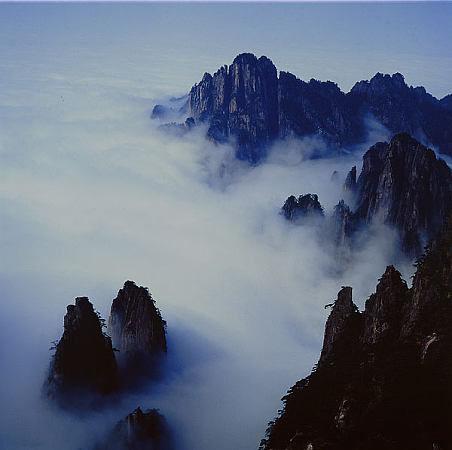 九龍峰自然保護區托管成效顯