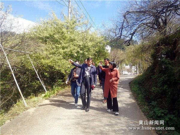 老葡京娱乐|休宁县陈霞乡产业发展 助推脱贫增收