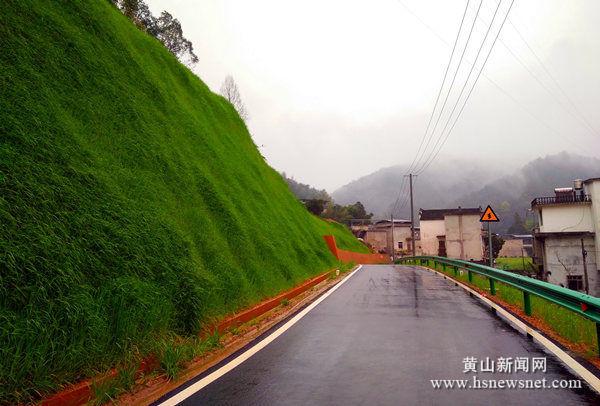 老葡京赌场|歙县坑口乡:垂直绿化带提升乡村魅力